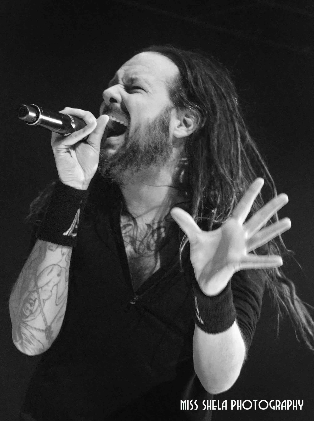 Korn at The Palace of Auburn Hills 11.29.2014